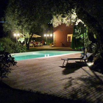 Agricontura by night