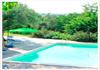 Pool Rex